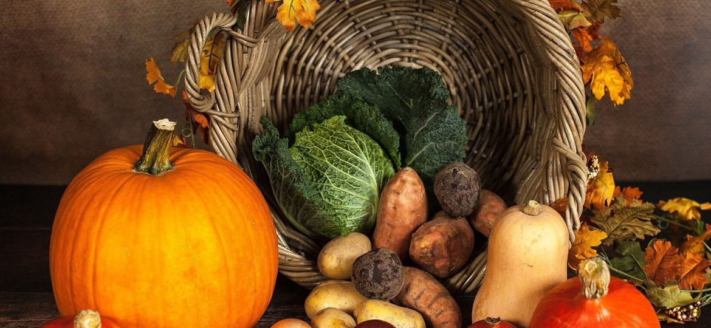 frugal thanksgiving cornucopia